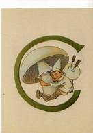 Non Signe, Carte Suedoise, Champignon, Lutin, Lettre C, Prinsarnes Blomsteralfabet - Künstlerkarten