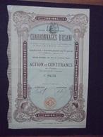 CORSE - CHARBONNAGES D'OSANI - ACTION 100 FRS - PARIS 1905 - Shareholdings