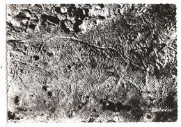 Le Bugue Sur Vezere (24) Caverne Ornee De Bara Baha - Gravure Prehistorique - Autres Communes