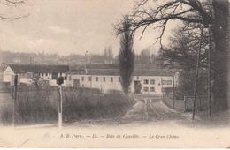 92 - BOIS DE CHAVILLE - Le Gros Chêne - Other Municipalities