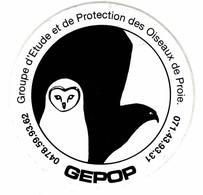 Oiseaux De Proie: Association De Protection: GEPOP. Autocollant - Autres Collections
