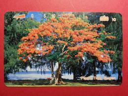 MICRONESIA - MTC ARBRE Flame Tree Saïpan CNMI Micronesie Used  (FA0718) - Micronésie