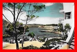 CPSM/pf  MALLORCA (Iles Baleares-Espagne)  Hôtel Bosque Mar, San Telmo...A653 - Mallorca