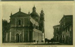 CASTIGLIONE DELLE STIVIERE ( MANTOVA ) SANTUARIO DI S. LUGI GONZAGA - EDIZ. BIGNOTTI  (3131) - Mantova