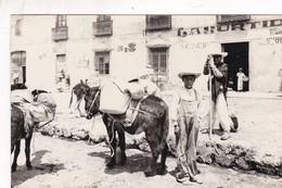 SANS DESCRIPTION. MEXICO. BURROS DONKEY ANE. CPA CIRCA 1940s - BLEUP - Messico