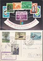 ITALIA REP. 1966 -  MOSTRA FILATELICA:CASARSA DELLA DELIZIA - ANNULLO 23/04/1967. - 6. 1946-.. Repubblica