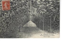 78 - VILLEPREUX - ( YVELINES ) - Ecole D'horticulture Le Nôtre - Belle Vue Animée De La Serre à Vigne - Villepreux