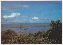1539/ PARC DE L'AKAGERA. Lac Ihema.- Published By SABENA. - Non écrite. Unused. No Escrita. Non Scritta. Ungelaufen. - Rwanda