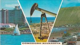 COMODORO RIVADAVIA. MULTIVISTA. CHUBUT. LIZ COLOR. CPA CIRCA 1970s - BLEUP - Argentina