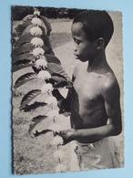 """MISSIONS AFRICAINES De LYON """" BRanche De Caféier En Fleurs ( Geo BLANDIN ) Anno 19?? ( Zie Foto's ) ! - Missions"""