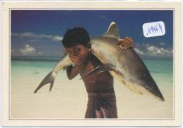 CPM GF-19464-Maldives - Jeune Portant Un Requin Blanc-Envoi Gratuit - Maldives