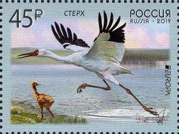 Russia - 2019 - Europa CEPT - National Birds - Siberian Сrane - Mint Stamp - 1992-.... Fédération