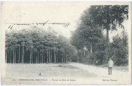 Bonsecours-Péruwelz - 39 - Entrée Du Bois De Sapin - Edition Delsart - 1906 - Péruwelz