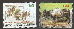 MACEDONIA 2019,ANIMALS,FAUNA,DONKEY,MNH - Autres