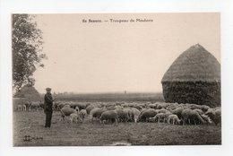 - CPA AGRICULTURE - EN BEAUCE - Troupeau De Moutons - Edition Lenormand - - Elevage