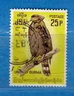 (Us3) ) BURMA, MYANMAR, BIRMANIA, FAUNA, UCCELLI, BIRDS, 1964, USATO. Yvert.97.  Vedi Descrizione. - Myanmar (Burma 1948-...)