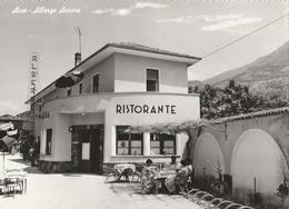 Cartolina - Postcard / Non Viaggiata - Unsent  - Arco, Albergo Aurora.  ( Gran Formato ) - Trento