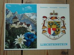 Fürstentum Liechtenstein, Principauté, Schloss Vaduz, Resienz Des Regierenden Fürsten - Liechtenstein
