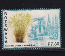 Botswana 2014, National Grass, Vfu - Botswana (1966-...)
