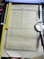 8g) REGNO D'ITALIA DIPLOMA PAGELLA LICENZA TECNICA SCUOLA REGINA ELENA GENOVA 1907 - Diplomi E Pagelle