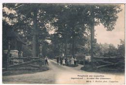 Hoogboom Par Cappellen - Jagersdreef 1914  (Geanimeerd) - Kapellen