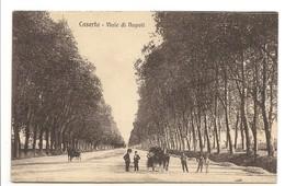 CASERTA - VIALE DI NAPOLI - Caserta