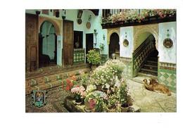 Cpms - ESPAGNE - Granada - Albaicin - Maison Arabe - Chien Teckel Cocker - Chiens - Granada