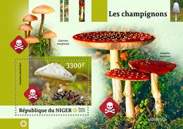 Niger. 2019 Mushrooms. (0102b)  OFFICIAL ISSUE - Champignons