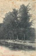 Bruxelles - Sugg S 25 N° 341 - Etangs De Rouge-Cloître ( Tache De Rouille) - Forests, Parks