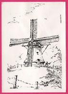 Dessin - Nederland - De Phoenix Molen Nes Ameland - Moulin - Molen - Ameland