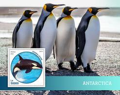 Sierra Leone. 2019 Antarctica. Penguin. (0216b)  OFFICIAL ISSUE - Pingouins & Manchots