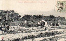 Viet-Nam,Indochine Française,Cpa Pénitencier De Poulo-Condore,L'Arrosage Au Jardin - Vietnam