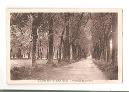 Clairvaux Les Lacs - Promenade Du Parterre - Clairvaux Les Lacs