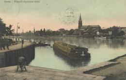 1910 - BOOM - Kanaal - Postkaart - Boom