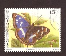 Belgique 1993 - Papillons  A Buzin COB 2504 - Belgique