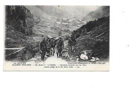 GUERRE 1914-1916. - En Alsace. - Le Rudlin. - Caravane Montant Au Lac Noir. (Mulet, Militaire) - Altri Comuni