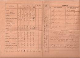 PA--00002-- PAGELLA ANNO SCOLASTICO 1917-1918 - MARTINENGO ( BERGAMO ) - Diplomi E Pagelle