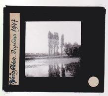 Oude Glasplaat (8,5 X 10cm).Rheinfelden.  Lac. Et Peupliers.1947 - Glasplaten