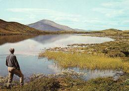 1 AK Norwegen * Landschaft Im Rondane Gebirge - Blick Zu Den Bergen Horgen Und Jetta * - Norwegen