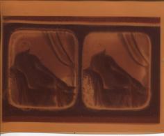 NEGATIF D'UNE FEMME NUE ASSISE - Pellicole Cinematografiche: 35mm-16mm-9,5+8+S8mm