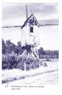 Westerlo: Molen Van Heultje ( 2 Scans) - Westerlo