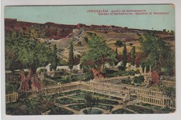 Jerusalem Jardin De Gethsemanie - Israele