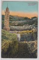 Piscine De Siloe - Israele
