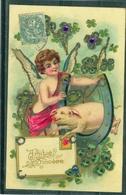Relief - Gaufrée - Embossed - Prage - Cochon - TBE Avec Dorures Et Pierreries - Cochons