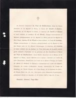 HASSINK GORSSEL Baron Du TOUR De BELLINCHAVE 72 Ans 1908 Ancien Ministre Grand Maître Cour Pays-Bas De LALAING - Overlijden