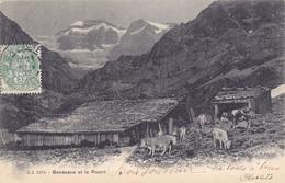 CPA SUISSE VALAIS @ CHAMPERY - BONAVEAU Et LE RUAN (GLACIER) En 1902 - Troupeau Vaches - VS Valais