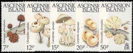Ascension 1983 Fungi Unmounted Mint. - Ascension (Ile De L')