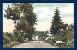 Libramont. Le Faubourg. Enfant, Vaches Et Mouton. 1908 - Libramont-Chevigny