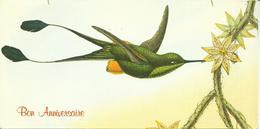 MAXI CARTE POSTALE PORTEFEUILLE - GUYANE - COLIBRI SPATHURA SOLTITIATIS - Editions G. DELABERGERIE N° 469/1 - Guyane