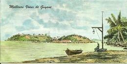 MAXI CARTE POSTALE PORTEFEUILLE - GUYANE - ILES DU SALUT - ILE ROYALE - Editions G. DELABERGERIE N° 445 - Guyane